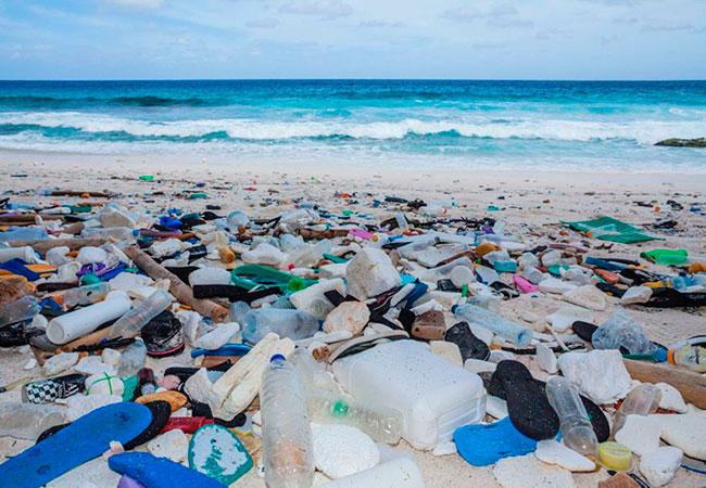 home_biodegradable